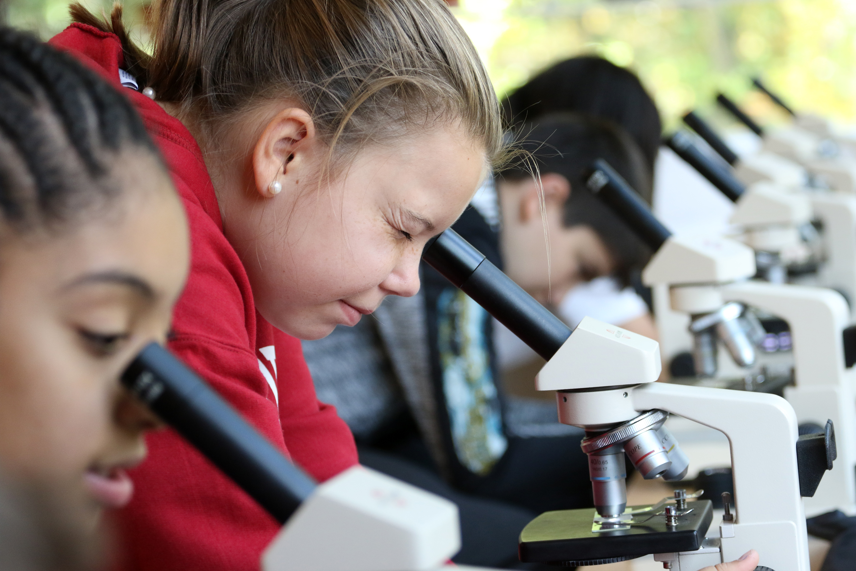 Students use microscopes during a lab