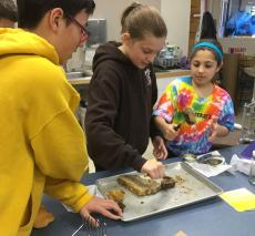 Middle school bee club extracts honey from the comb