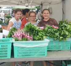 Campers visit the farmers' market