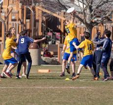 JV ultimate action