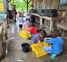 Students Working At A Farm