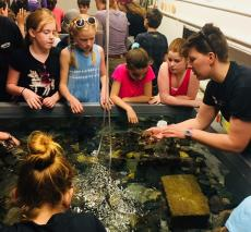 Students explore touch tanks at the marine science center.