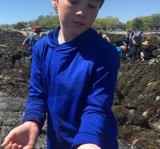 A boy holds a tiny crab.