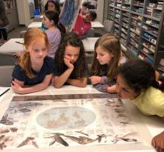 Four girls examine a compass rose on their map in the shape of a starfish